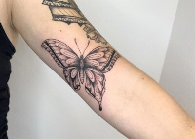 Black Lining - Franka - Black Grey - Butterfly